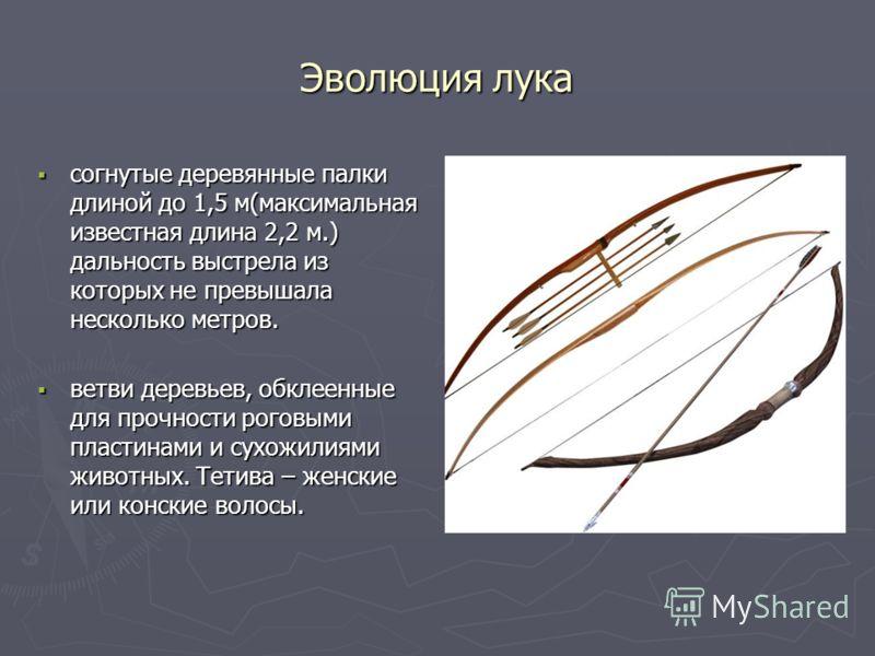 Эволюция лука согнутые деревянные палки длиной до 1,5 м(максимальная известная длина 2,2 м.) дальность выстрела из которых не превышала несколько метров. согнутые деревянные палки длиной до 1,5 м(максимальная известная длина 2,2 м.) дальность выстрел