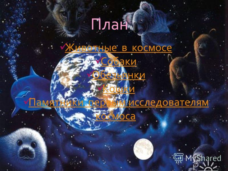 План Животные в космосе Собаки Обезьянки Кошки Памятники первым исследователям космоса Памятники первым исследователям космоса