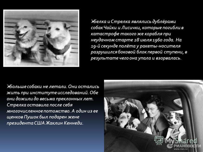 Больше собаки не летали. Они остались жить при институте исследований. Обе они дожили до весьма преклонных лет. Стрелка оставила после себя многочисленное потомство. А один из ее щенков Пушок был подарен жене президента США Жаклин Кеннеди. Белка и Ст