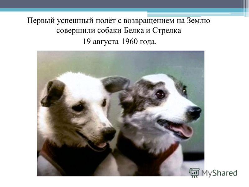 Первый успешный полёт с возвращением на Землю совершили собаки Белка и Стрелка 19 августа 1960 года. Собаки-космонавты Белка и Стрелка