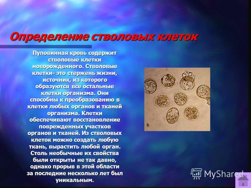 Определение стволовых клеток Пуповинная кровь содержит стволовые клетки новорожденного. Стволовые клетки- это стержень жизни, источник, из которого образуются все остальные клетки организма. Они способны к преобразованию в клетки любых органов и ткан