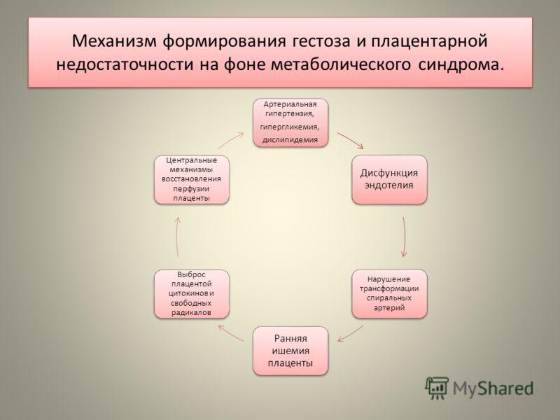 Механизм формирования гестоза и плацентарной недостаточности на фоне метаболического синдрома. Артериальная гипертензия, гипергликемия, дислипидемия Дисфункция эндотелия Нарушение трансформации спиральных артерий Ранняя ишемия плаценты Выброс плацент