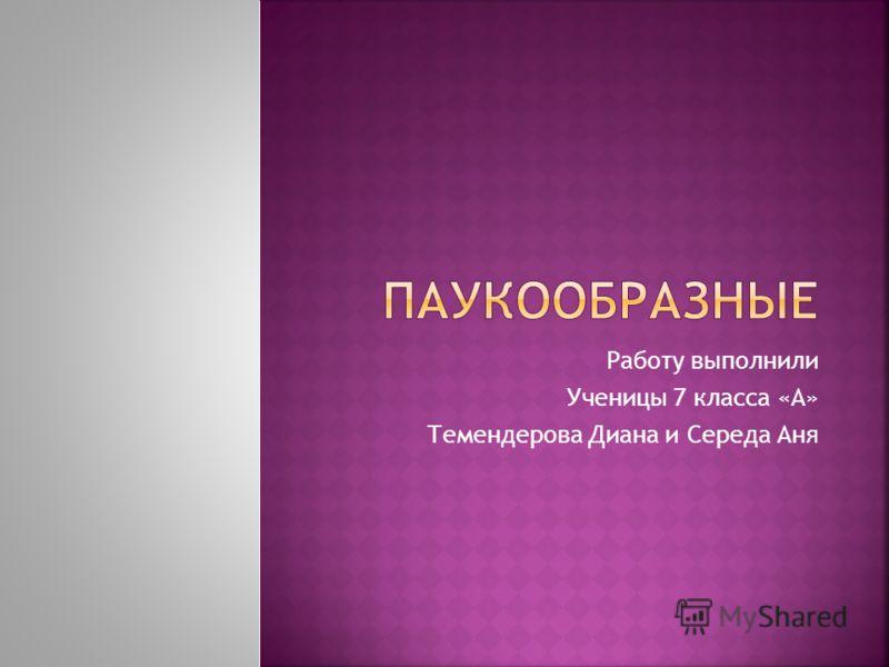 Работу выполнили Ученицы 7 класса «А» Темендерова Диана и Середа Аня