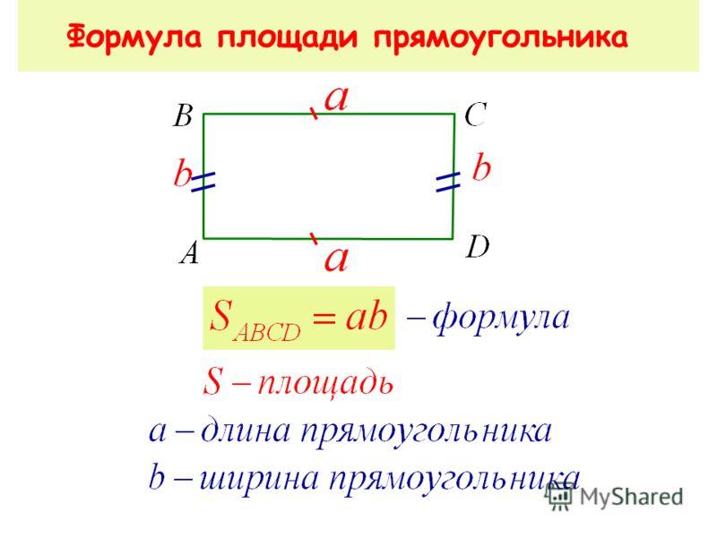 Площадь прямоугольника