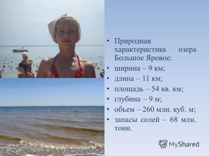 Природная характеристика озера Большое Яровое: ширина – 9 км; длина – 11 км; площадь – 54 кв. км; глубина – 9 м; объем – 260 млн. куб. м; запасы солей – 68 млн. тонн.