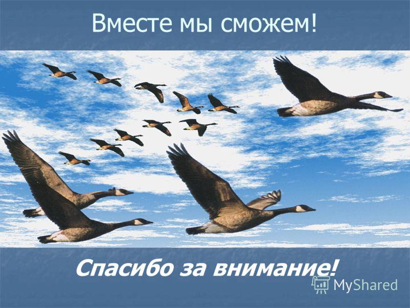 Девиз Бюро проекта «Здоровые города» в Ставрополе «Никогда не сомневайтесь, что мыслящая, убежденная группа людей может изменить мир. На самом деле только так в жизни и происходит». Маргарет Мид