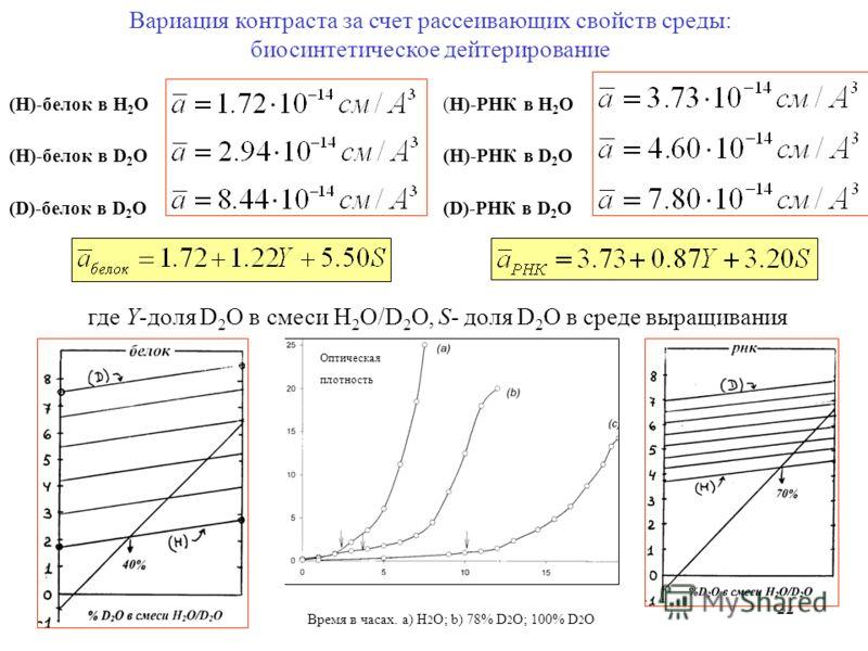 22 Вариация контраста за счет рассеивающих свойств среды: биосинтетическое дейтерирование (H)-РНК в H 2 O (H)-РНК в D 2 O (D)-РНК в D 2 O (H)-белок в H 2 O (H)-белок в D 2 О (D)-белок в D 2 O где Y-доля D 2 O в смеси H 2 O/D 2 O, S- доля D 2 O в сред
