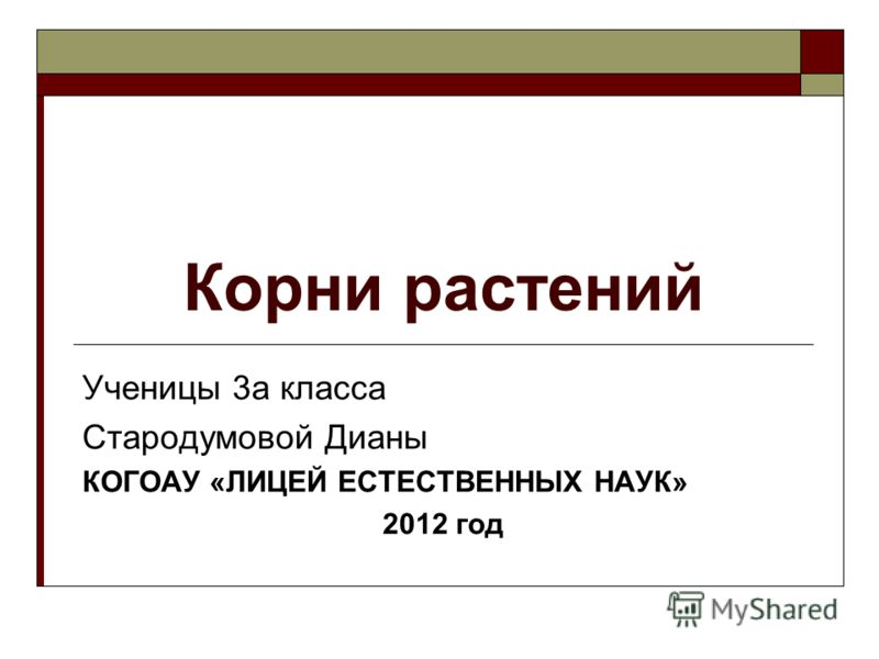 Корни растений Ученицы 3а класса Стародумовой Дианы КОГОАУ «ЛИЦЕЙ ЕСТЕСТВЕННЫХ НАУК» 2012 год