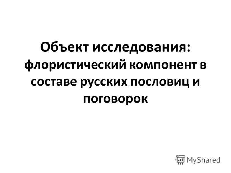 Объект исследования: флористический компонент в составе русских пословиц и поговорок
