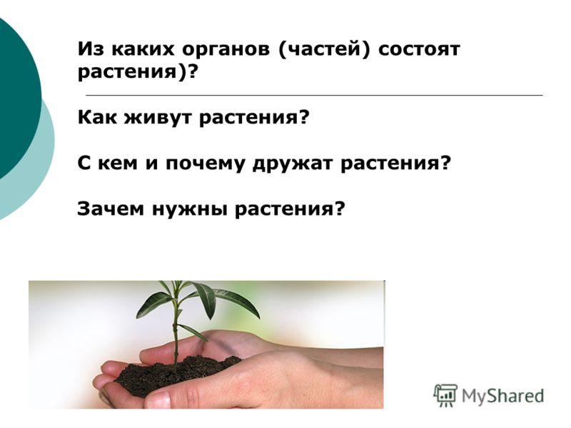 Из каких органов (частей) состоят растения)? Как живут растения? С кем и почему дружат растения? Зачем нужны растения?