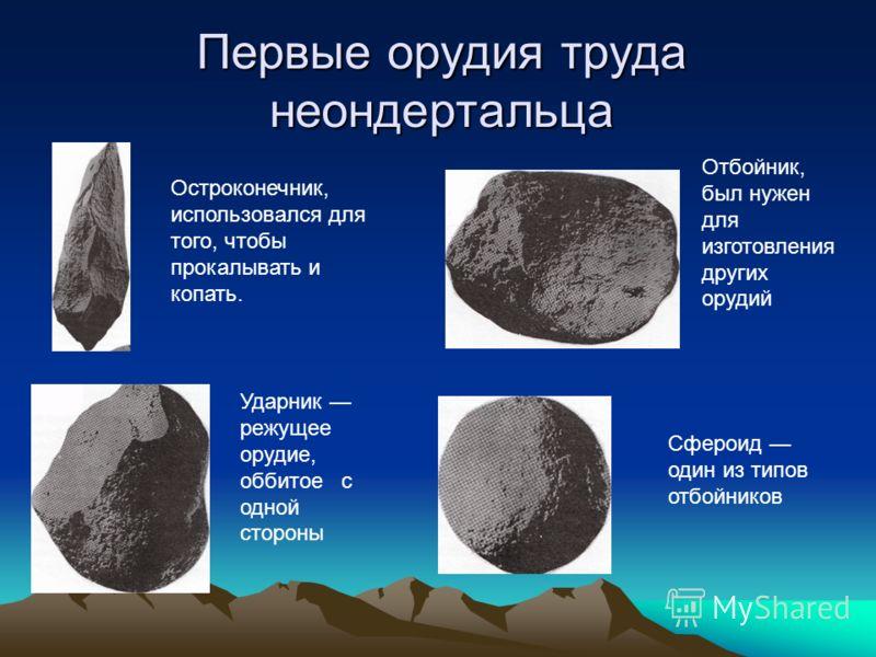 Первые орудия труда неондертальца Остроконечник, использовался для того, чтобы прокалывать и копать. Отбойник, был нужен для изготовления других орудий Ударник режущее орудие, оббитое с одной стороны Сфероид один из типов отбойников