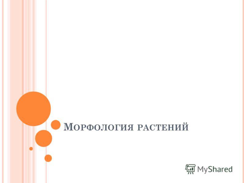 М ОРФОЛОГИЯ РАСТЕНИЙ
