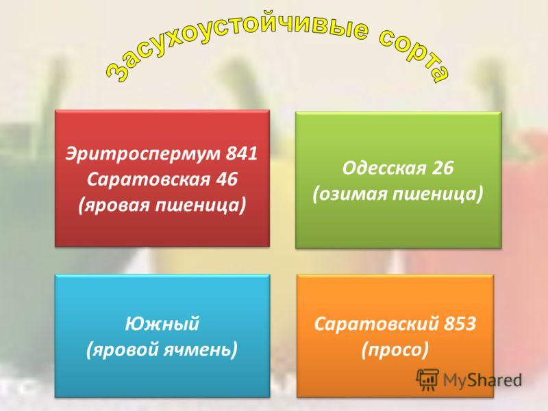Эритроспермум 841 Саратовская 46 (яровая пшеница) Эритроспермум 841 Саратовская 46 (яровая пшеница) Одесская 26 (озимая пшеница) Одесская 26 (озимая пшеница) Южный (яровой ячмень) Южный (яровой ячмень) Саратовский 853 (просо) Саратовский 853 (просо)