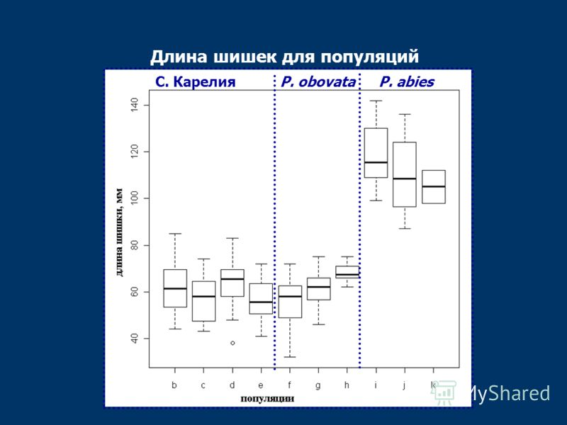 Длина шишек для популяций P. abiesP. obovataС. Карелия