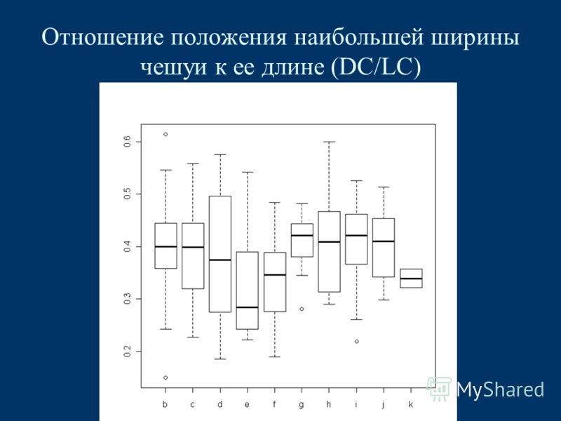Отношение положения наибольшей ширины чешуи к ее длине (DC/LC)