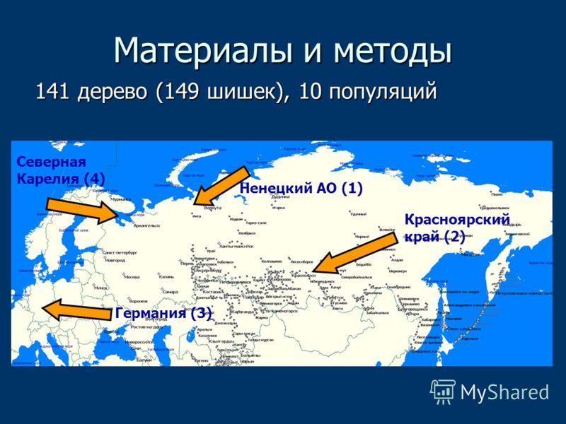 Материалы и методы 141 дерево (149 шишек), 10 популяций Германия (3) Северная Карелия (4) Ненецкий АО (1) Красноярский край (2)