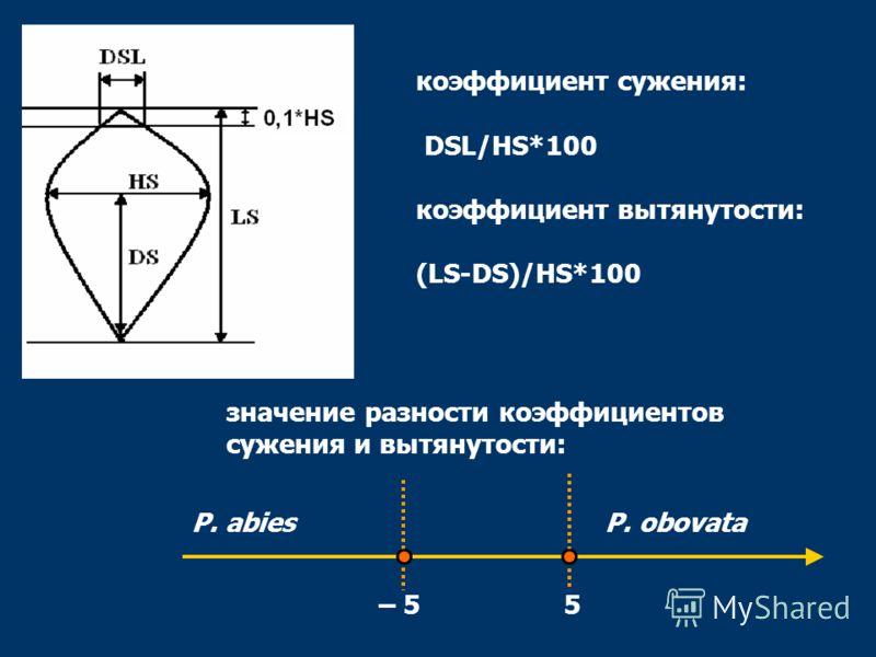 коэффициент сужения: DSL/HS*100 коэффициент вытянутости: (LS-DS)/HS*100 значение разности коэффициентов сужения и вытянутости: – 55 P. abiesP. obovata
