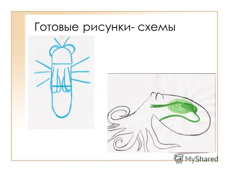 Готовые рисунки- схемы