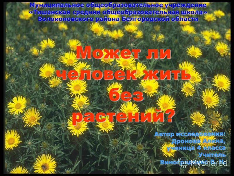 Может ли человек жить без растений? Может ли человек жить без растений? без растений? Автор исследования: Дронова Алина, ученица 4 класса Учитель Винограденко В. Н. Муниципальное общеобразовательное учреждение «Тишанская средняя общеобразовательная ш