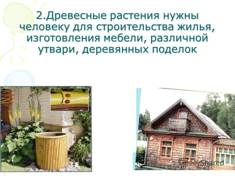 2.Древесные растения нужны человеку для строительства жилья, изготовления мебели, различной утвари, деревянных поделок
