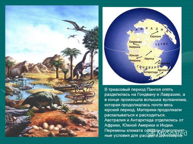 В триасовый период Пангея опять разделилась на Гондвану и Лавразию, а в конце произошла вспышка вулканизма, которая продолжалась почти весь юрский период. Материки продолжали раскалываться и расходиться. Австралия и Антарктида отделились от Африки, Ю