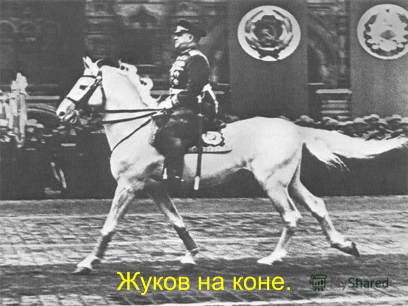 Жуков на коне.