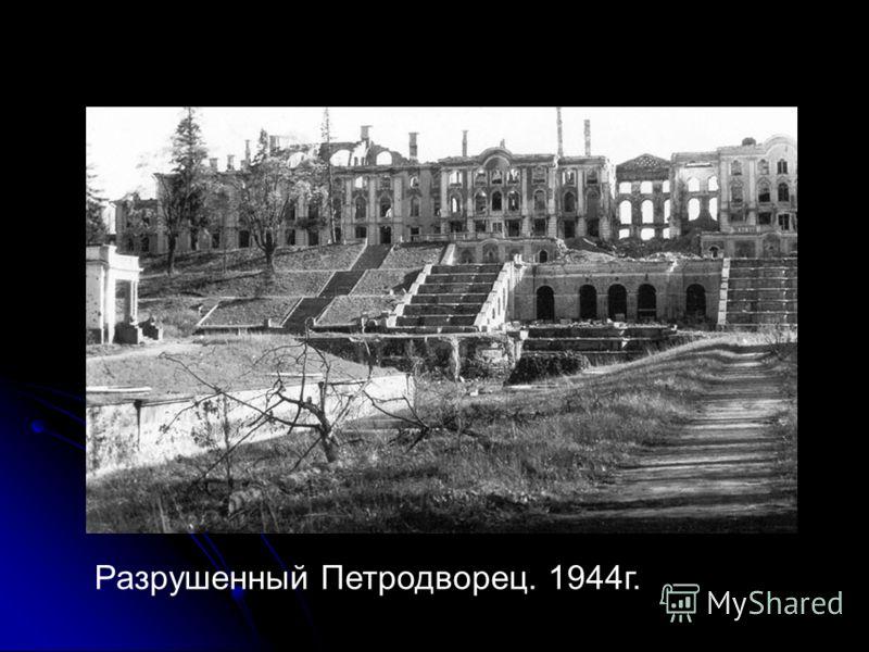 Разрушенный Петродворец. 1944г.