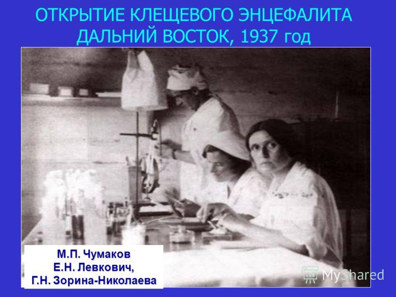 ОТКРЫТИЕ КЛЕЩЕВОГО ЭНЦЕФАЛИТА ДАЛЬНИЙ ВОСТОК, 1937 год М.П. Чумаков Е.Н. Левкович, Г.Н. Зорина-Николаева