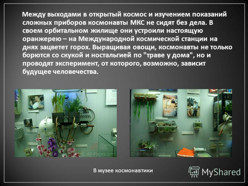 Между выходами в открытый космос и изучением показаний сложных приборов космонавты МКС не сидят без дела. В своем орбитальном жилище они устроили настоящую оранжерею – на Международной космической станции на днях зацветет горох. Выращивая овощи, косм