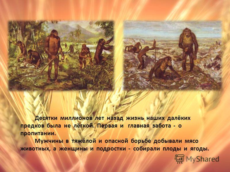 Десятки миллионов лет назад жизнь наших далёких предков была не лёгкой. Первая и главная забота - о пропитании. Мужчины в тяжёлой и опасной борьбе добывали мясо животных, а женщины и подростки - собирали плоды и ягоды.