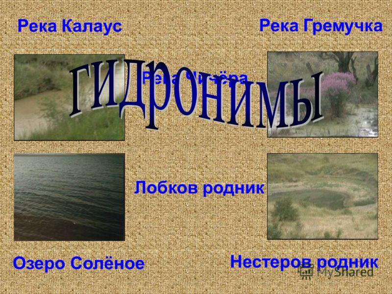 Река Калаус Река Чичёра Река Гремучка Озеро Солёное Нестеров родник Лобков родник