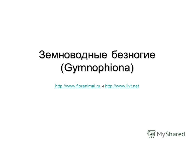 Земноводные безногие (Gymnophiona) http://www.floranimal.ruhttp://www.floranimal.ru и http://www.livt.nethttp://www.livt.net
