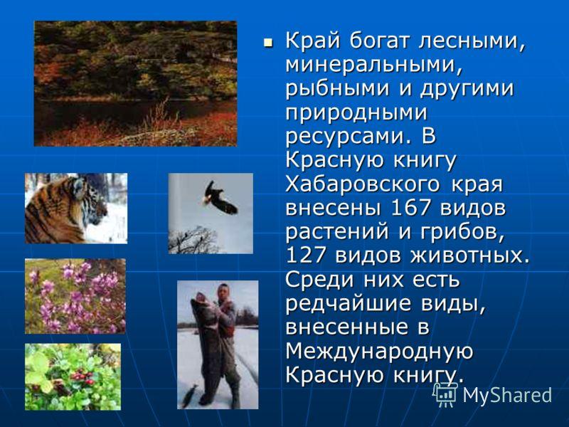 Край богат лесными, минеральными, рыбными и другими природными ресурсами. В Красную книгу Хабаровского края внесены 167 видов растений и грибов, 127 видов животных. Среди них есть редчайшие виды, внесенные в Международную Красную книгу. Край богат ле