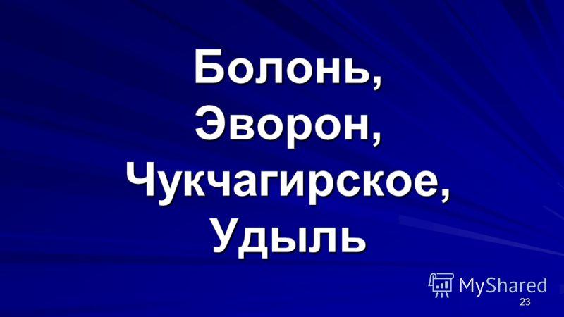 Болонь, Эворон, Чукчагирское, Удыль 23