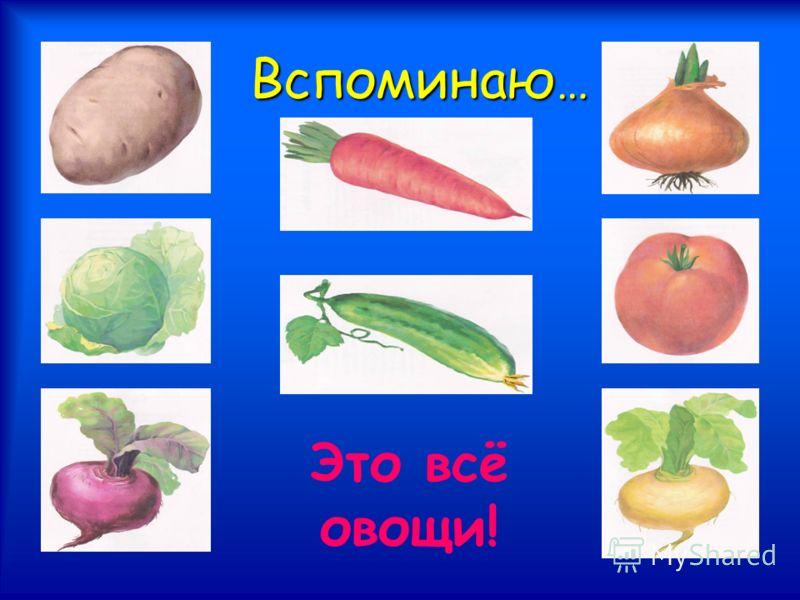 Вспоминаю … Это всё овощи!