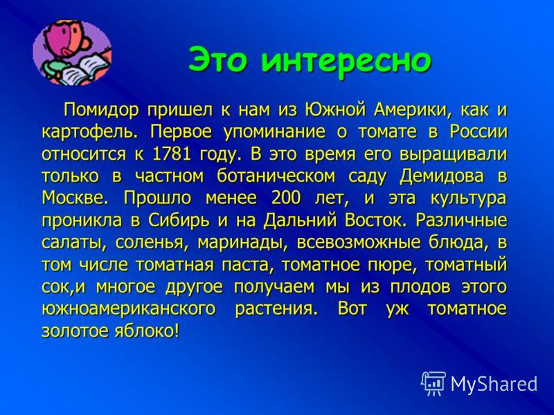 Это интересно Помидор пришел к нам из Южной Америки, как и картофель. Первое упоминание о томате в России относится к 1781 году. В это время его выращивали только в частном ботаническом саду Демидова в Москве. Прошло менее 200 лет, и эта культура про
