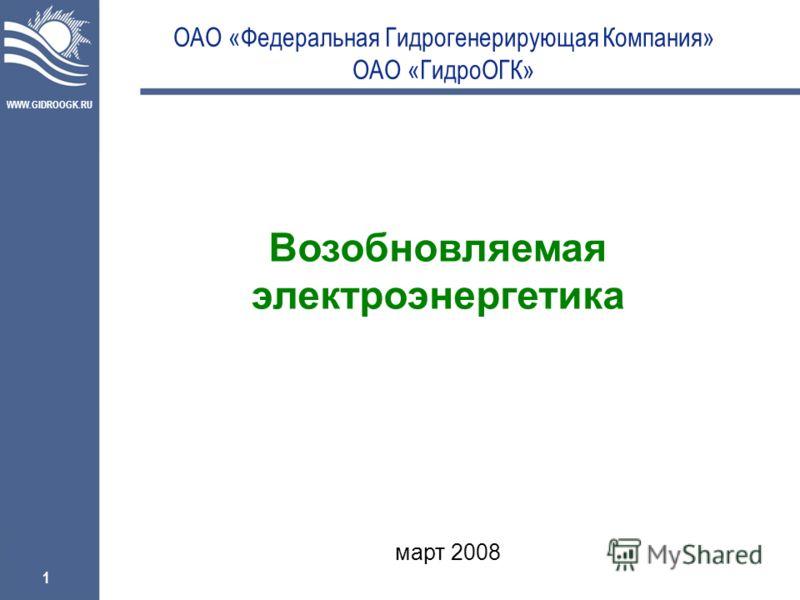 WWW.GIDROOGK.RU 1 ОАО «Федеральная Гидрогенерирующая Компания» ОАО «ГидроОГК» Возобновляемая электроэнергетика март 2008