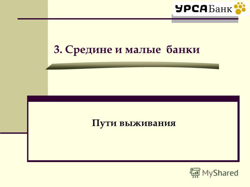 3. Средине и малые банки Пути выживания