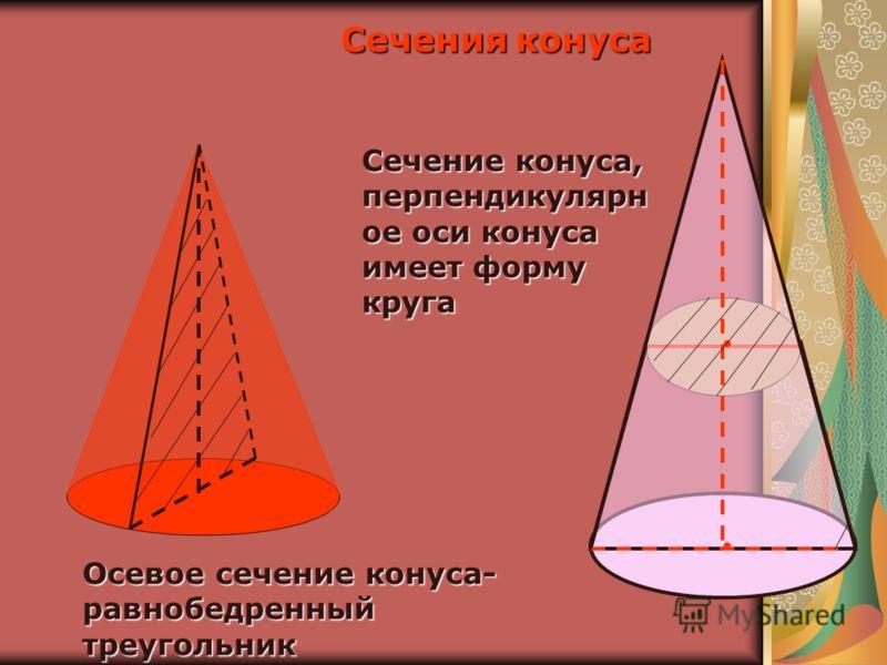 Осевое сечение конуса- равнобедренный треугольник Сечение конуса, перпендикулярн ое оси конуса имеет форму круга Сечения конуса