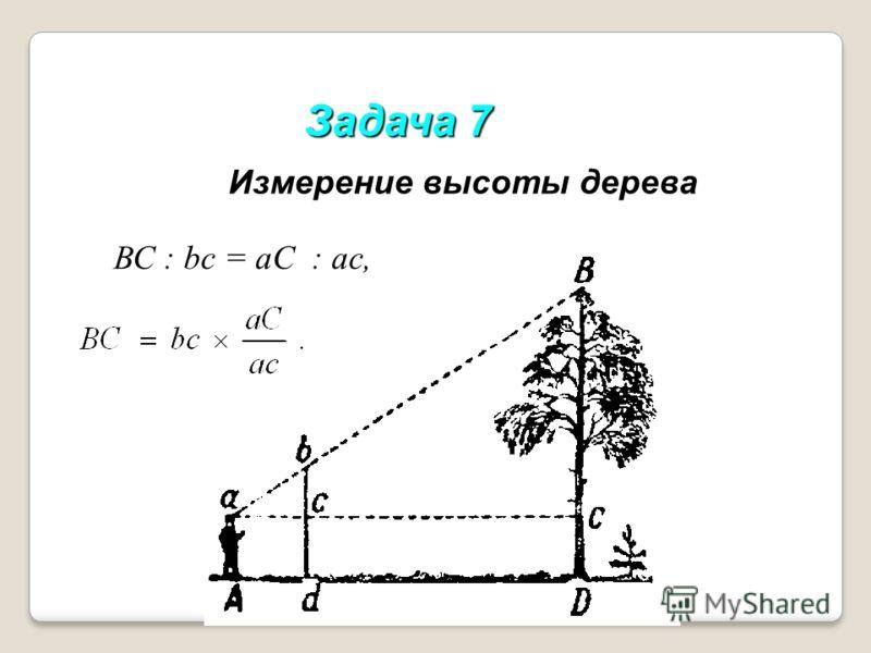 Задача 7 Измерение высоты дерева ВС : bc = aC : ас,