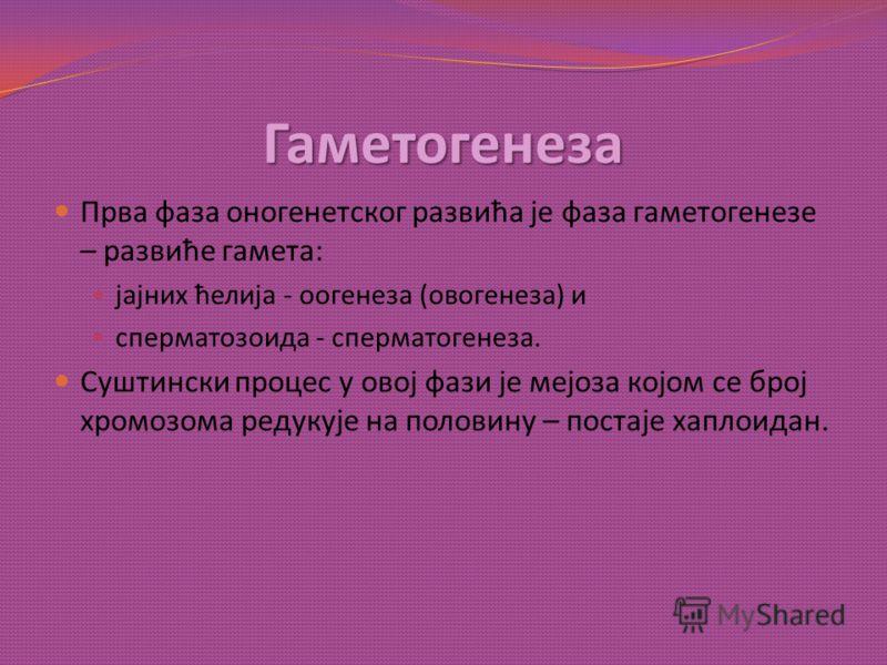 Гаметогенеза Прва фаза оногенетског развића је фаза гаметогенезе – развиће гамета: јајних ћелија - оогенеза (овогенеза) и сперматозоида - сперматогенеза. Суштински процес у овој фази је мејоза којом се број хромозома редукује на половину – постаје ха