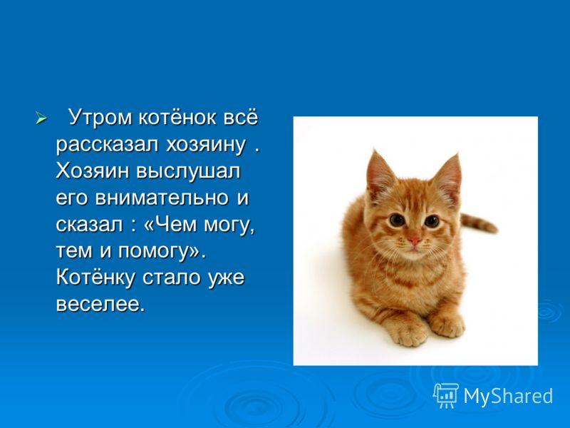 Утром котёнок всё рассказал хозяину. Хозяин выслушал его внимательно и сказал : «Чем могу, тем и помогу». Котёнку стало уже веселее. Утром котёнок всё рассказал хозяину. Хозяин выслушал его внимательно и сказал : «Чем могу, тем и помогу». Котёнку ста