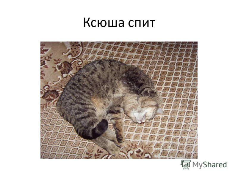 Ксюша спит