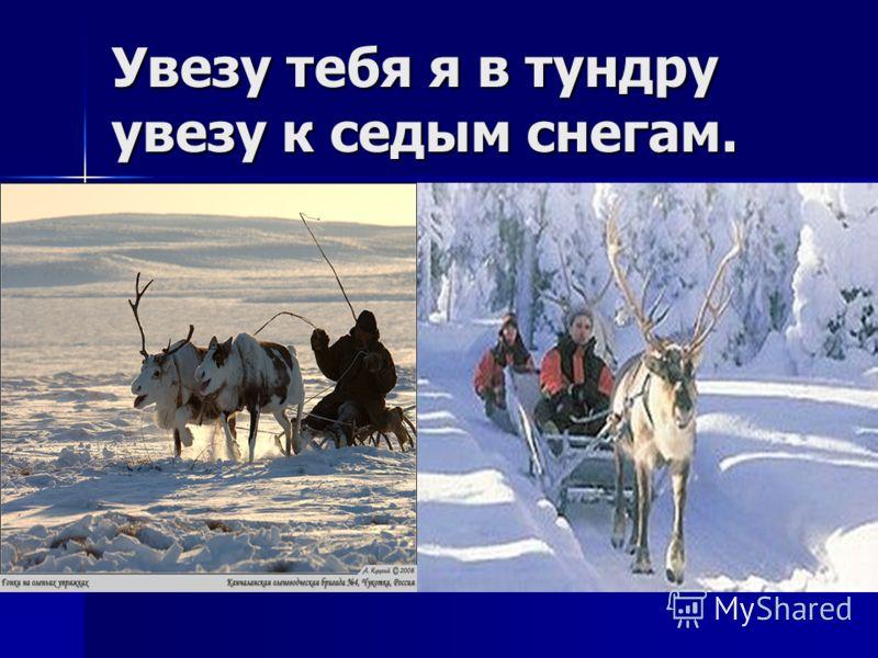 Увезу тебя я в тундру увезу к седым снегам.