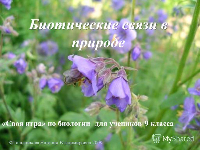 ©Пильщикова Наталия Владимировна,2009