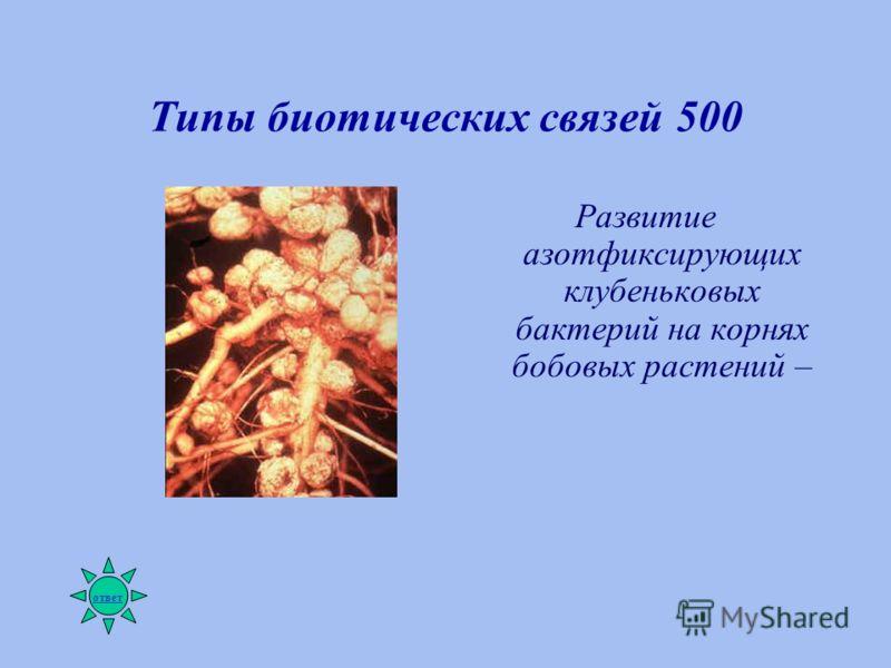 Типы биотических связей 500 Развитие азотфиксирующих клубеньковых бактерий на корнях бобовых растений – ответ