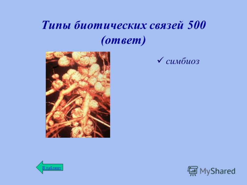 Типы биотических связей 500 (ответ) симбиоз В таблицу