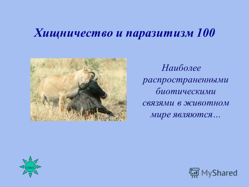 Хищничество и паразитизм 100 Наиболее распространенными биотическими связями в животном мире являются… ответ
