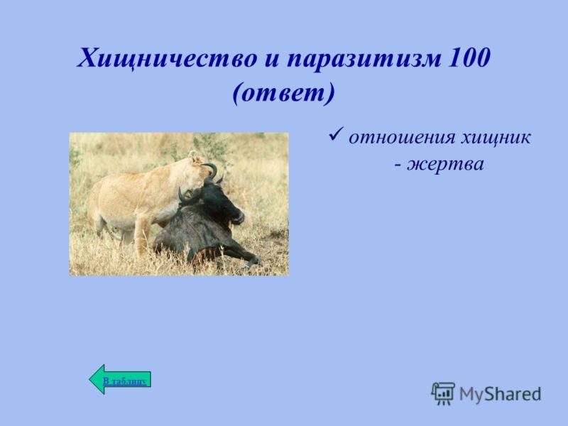 Хищничество и паразитизм 100 (ответ) отношения хищник - жертва В таблицу