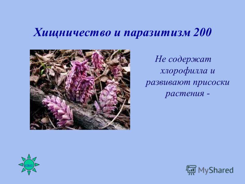 Хищничество и паразитизм 200 Не содержат хлорофилла и развивают присоски растения - ответ